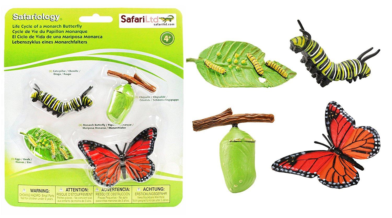 Collecta mariposa monarca