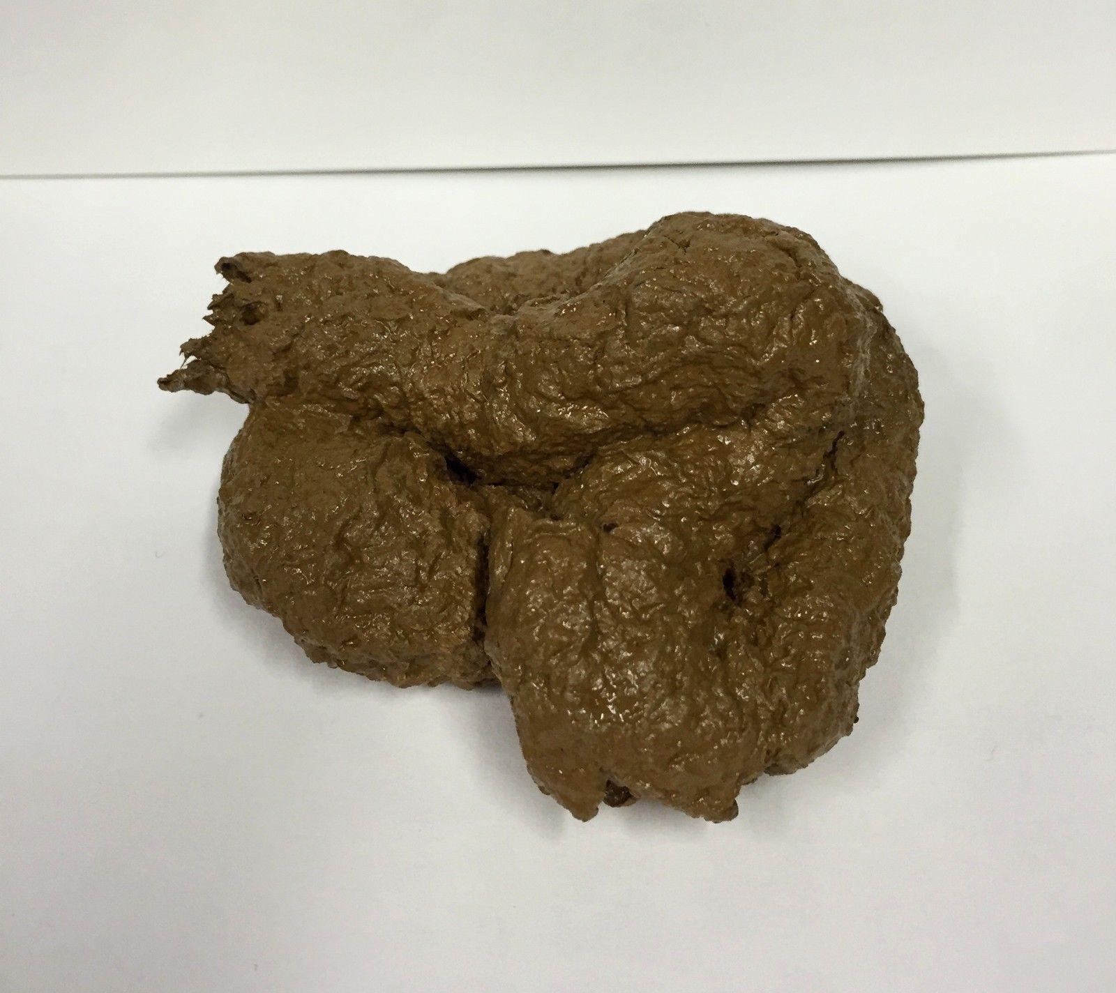 PREMIUM Fake Dog Poop Doggie Poo Realistic Doggy Doo Doo Dirt Joke Gag Crap Pile