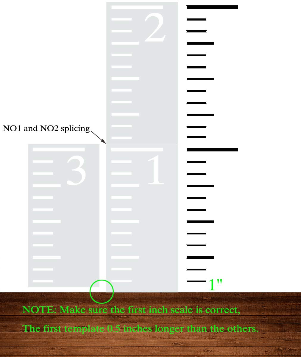 Growth Chart Ruler Template